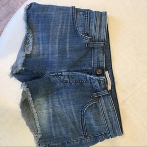 Rich and Skinny Jean Shorts